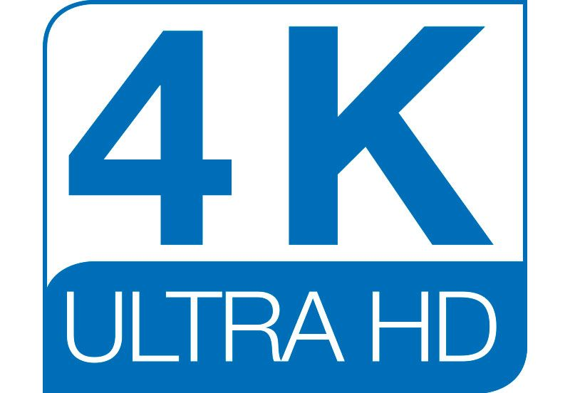 4K Ultra HD endoscopy logo